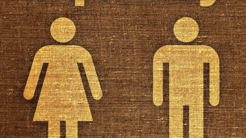A quels niveaux la place de la femme a-t-elle évolué dans la société ?
